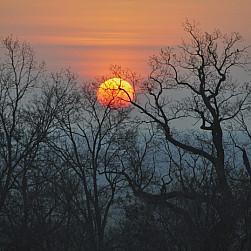Ku pokrzepieniu serc…wiosna w Lubiniu